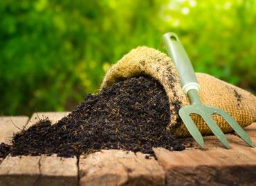 Le sol est l'engrais